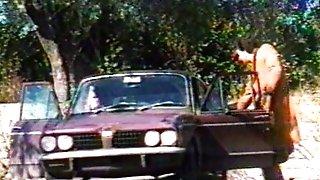 Voglia di Sesso 1981