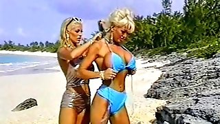 Brief Hair Blonde and Lengthy Hair Blonde With Sandy Shells